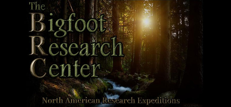 Bigfoot Documentaries